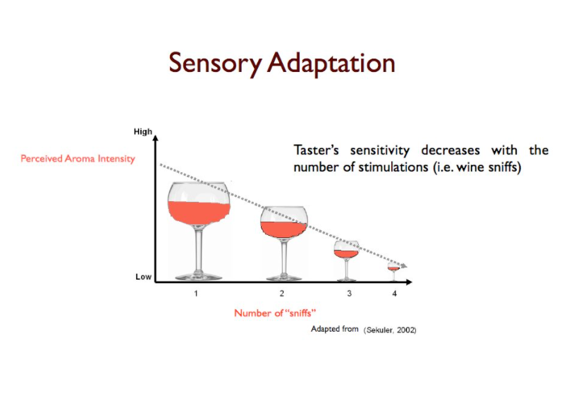 Sensory Adaptation: Definition & Examples